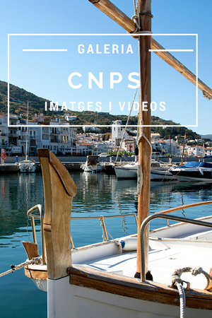 CNPS-web-icono-galeria-portada