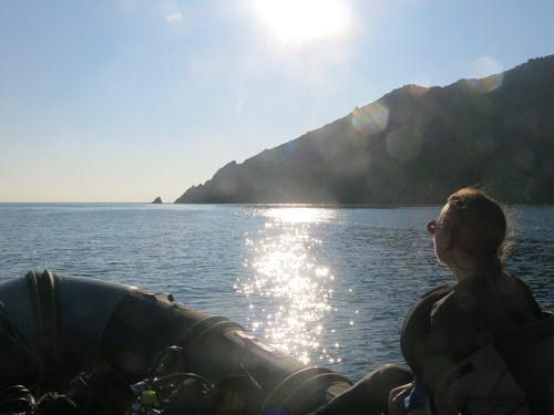 CNPS-web-imatge-submarinisme-activitats-sortides