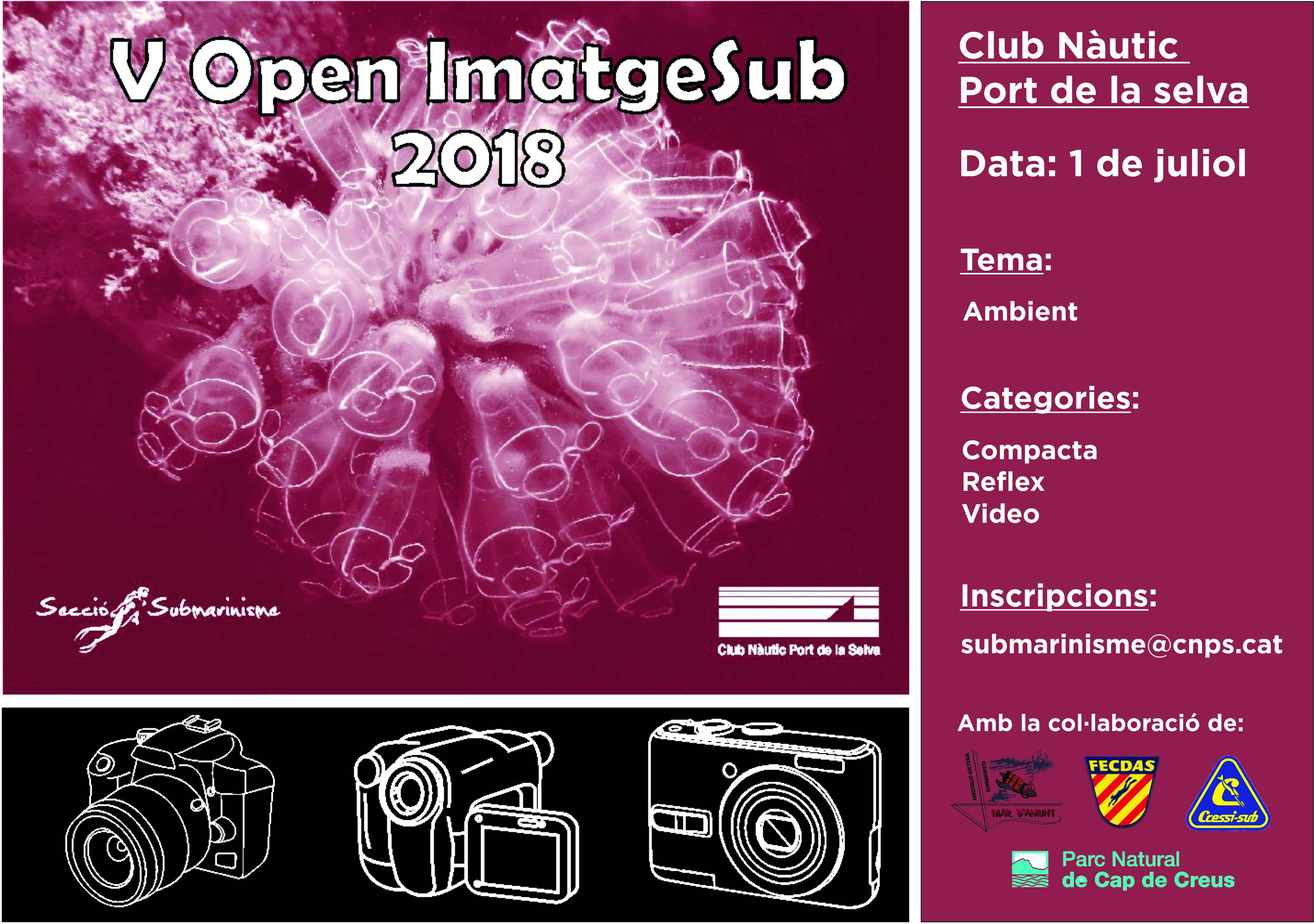 V OPEN IMATGESUB_R