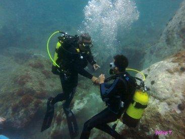 BATEJOS BUSSEIG | Secc. Submarinisme  Juliol, Agost i Setembre 2015