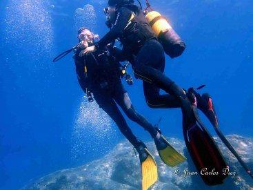 SECCIÓ SUBMARINISME | Batejos de mar – Temporada 2020